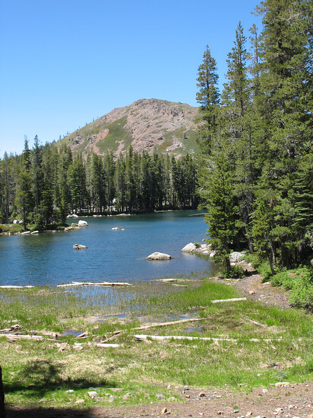 Fall Creek Mountain.
