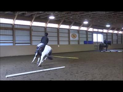 TSRC 2019-02-13 Milestone Sporthorse Video