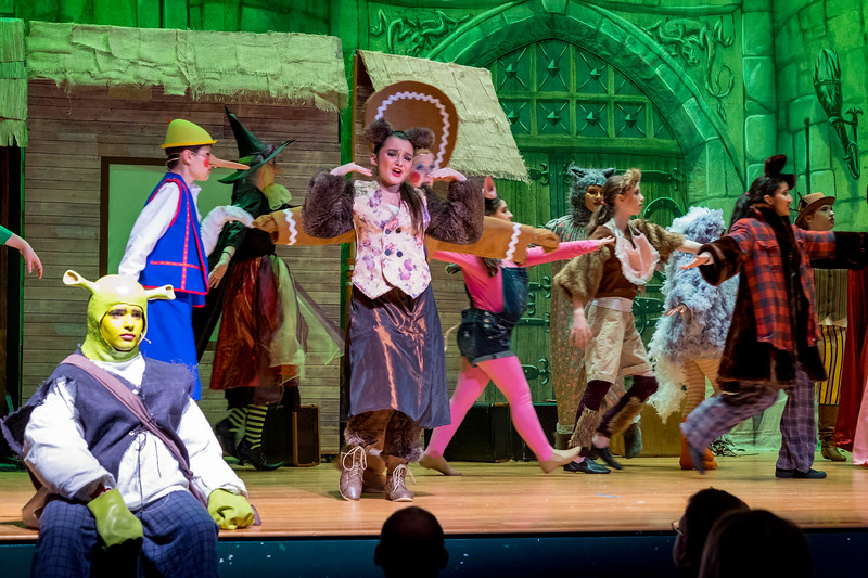 2015-03 Shrek Play 2634.jpg