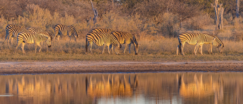 Botswana_June_2017 (1030 of 6179).jpg