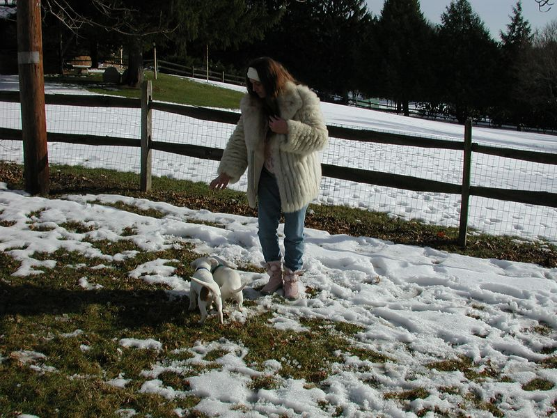 Feb 05- Puppies 021.jpg