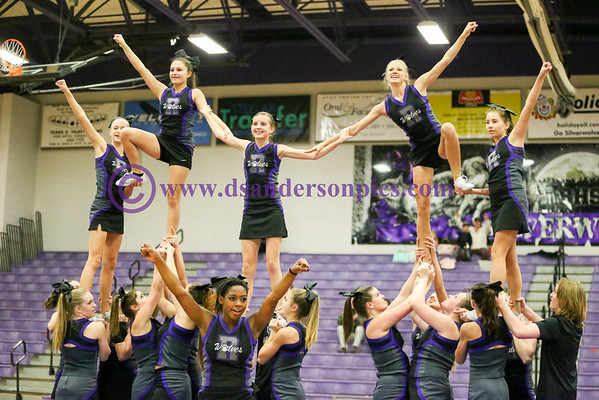 2016 01 15 RHS CHEERLEADERS
