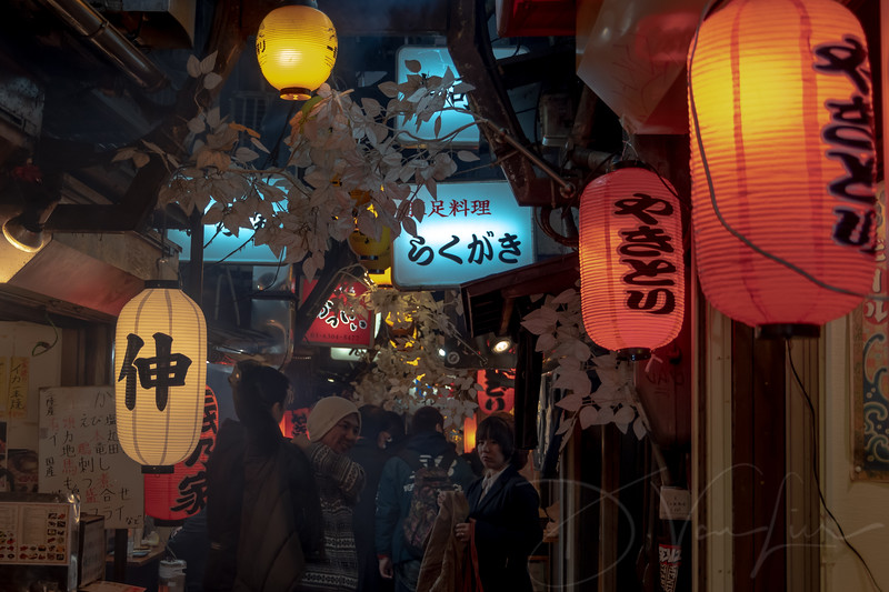 JapanPhotoTour20190205-9.jpg