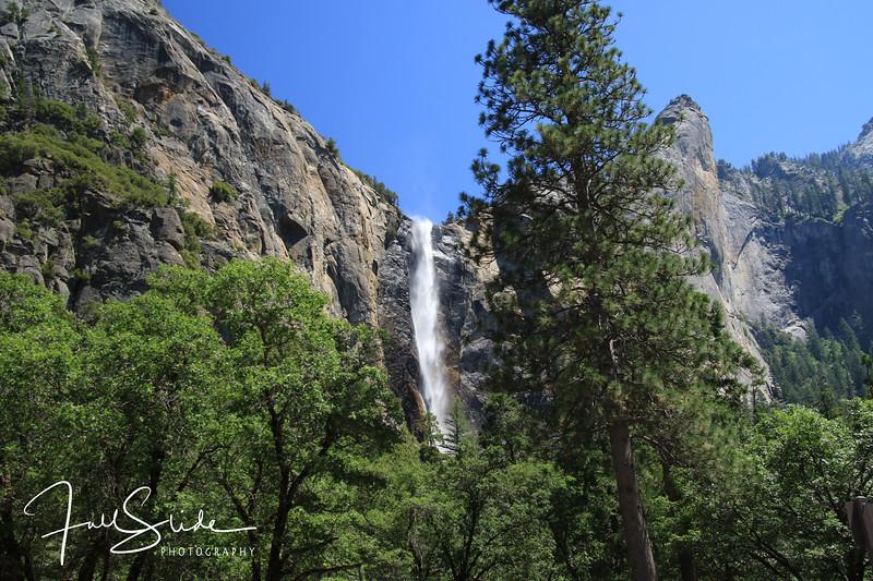 Yosemite 2018 -32.jpg