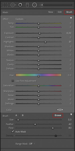 Brush Tool of the Radial Filter