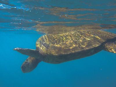 Kauai 2009