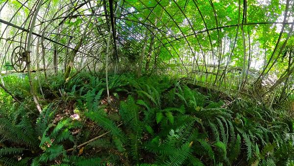 08-08-Greenhouses