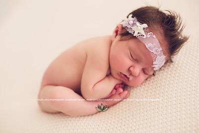 LuLu - Newborn