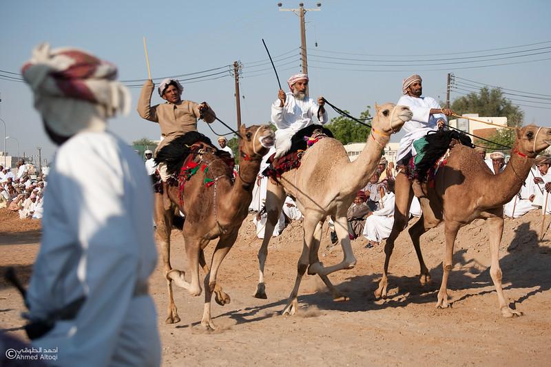 Camel Race  (23).jpg