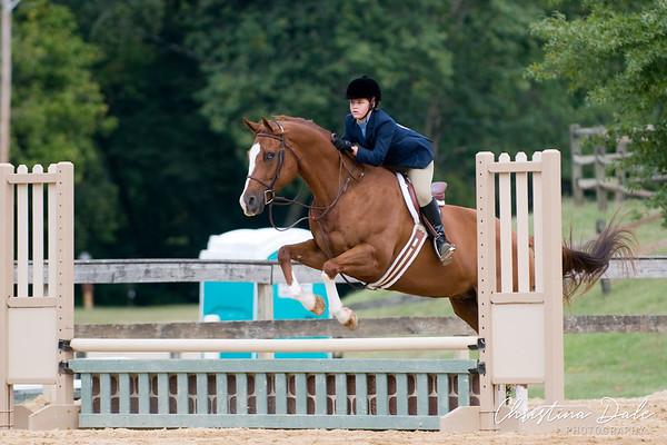 "112-114 Schooling Horse Hunter 2'3"""