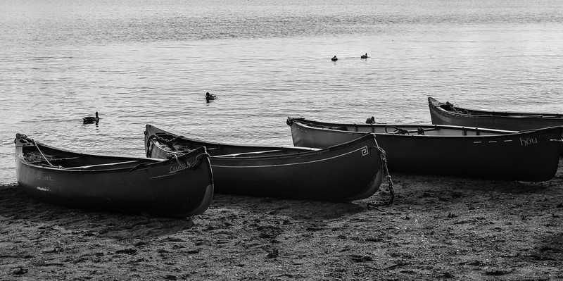 Canoeas on the shore of Loch Lomand