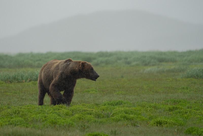 Alaska-176.jpg