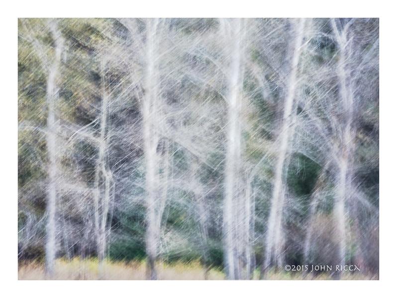 Yosemite Impression 21.jpg