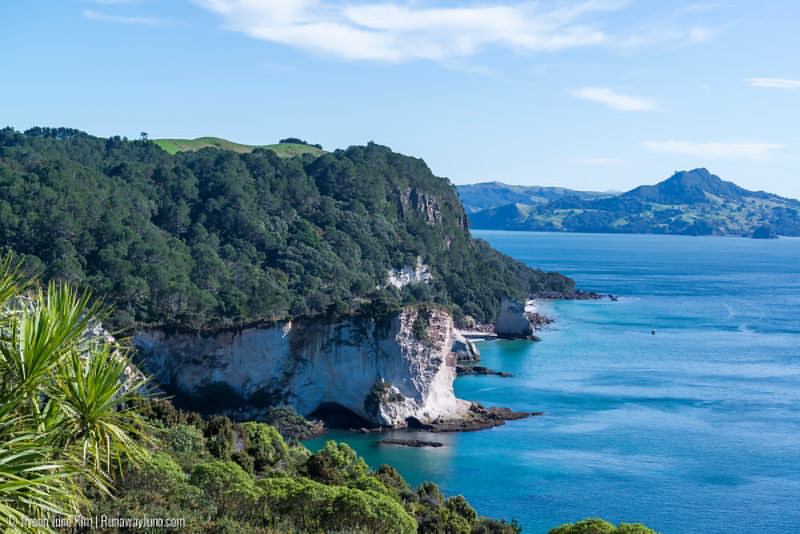 05.16_Cathedral Cove-3776.jpg