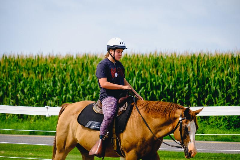 equestrian-224.jpg
