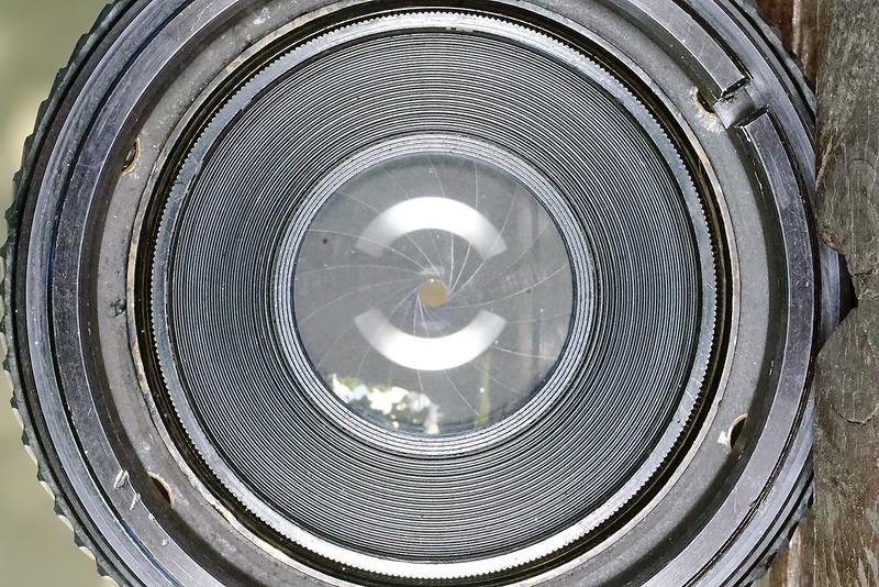 apo tessar 24cm w. psix bellows cla (3).JPG