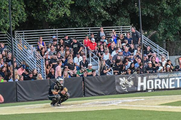 2019 Baseball Season Highlights