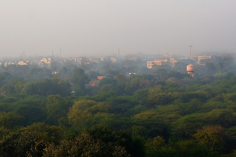 Delhi across the Park.jpg