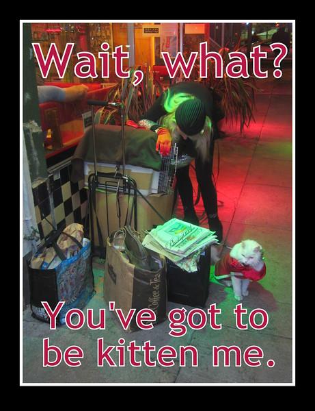 1-7-13 Mahogany Mondays 001 kitten me meme.jpg