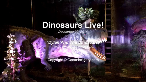 20141222 Washington, DC - Dinosaurs Live Video
