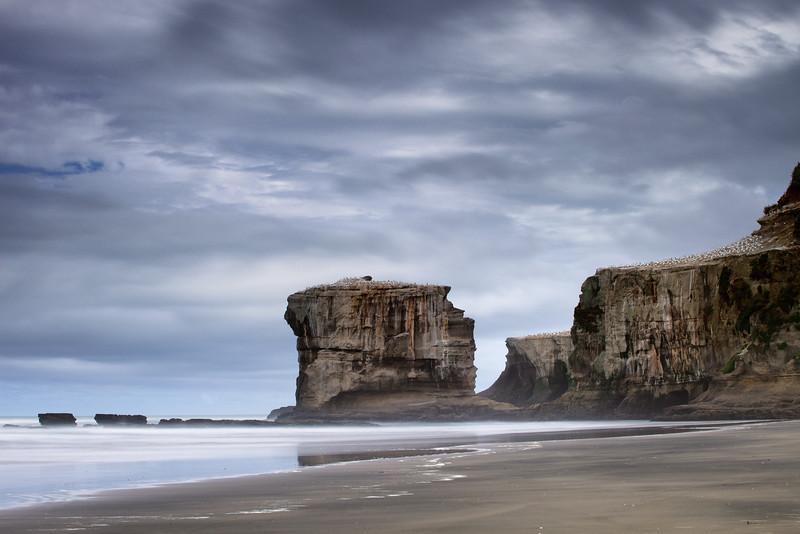 Otakamiro Point gannet colony from Maori Bay