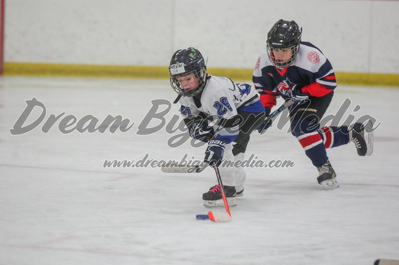 Blizzard Hockey 111719 7406.jpg