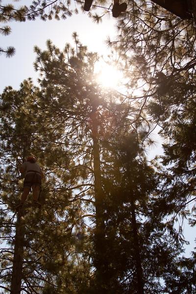 Wildwood-1.jpg