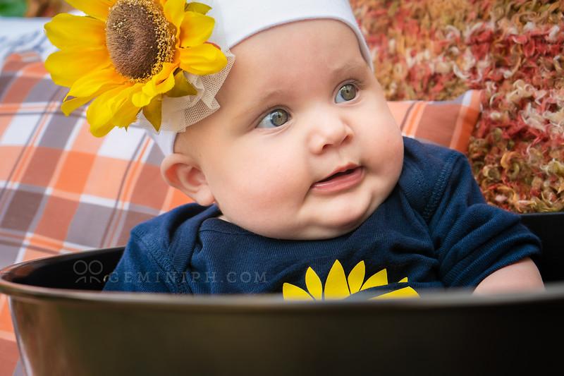 Baby - DSC05758 - web copy.jpg