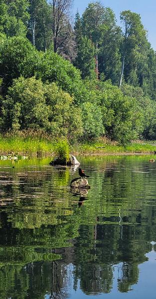 07-08-2021 Kayaking from Malone Springs-19.jpg