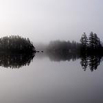 """Branch  Lake at Dawn"""