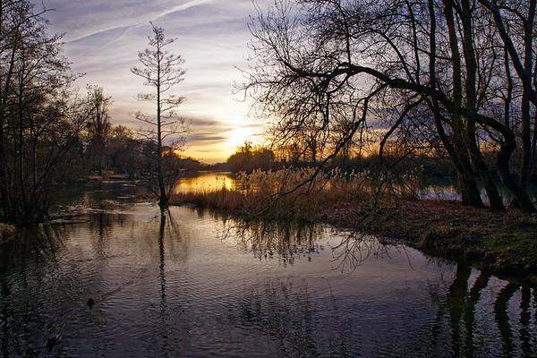 Le Loiret, soir d'hiver