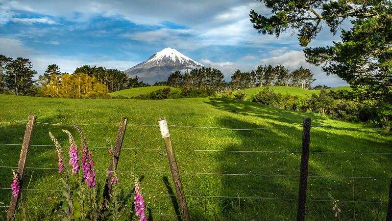 New Zealand_039.jpg
