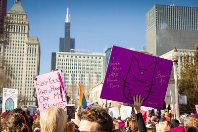 Women's March on Washington - Chicago Illinois