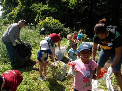 6.2.12 Invasive Plant Removal in Hilton Area of Patapsco State Park With REI Friends and Others