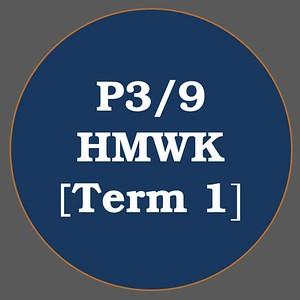 P3/9 HMWK T1