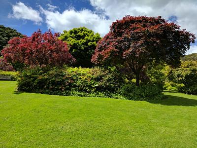 2016 NZ20 Dunedin Botanical Gardens