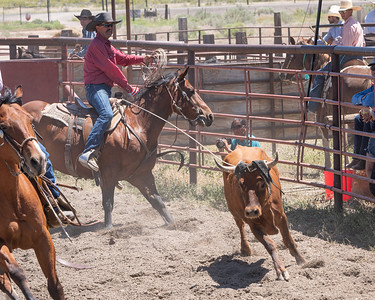 Open & Youth Team Roping