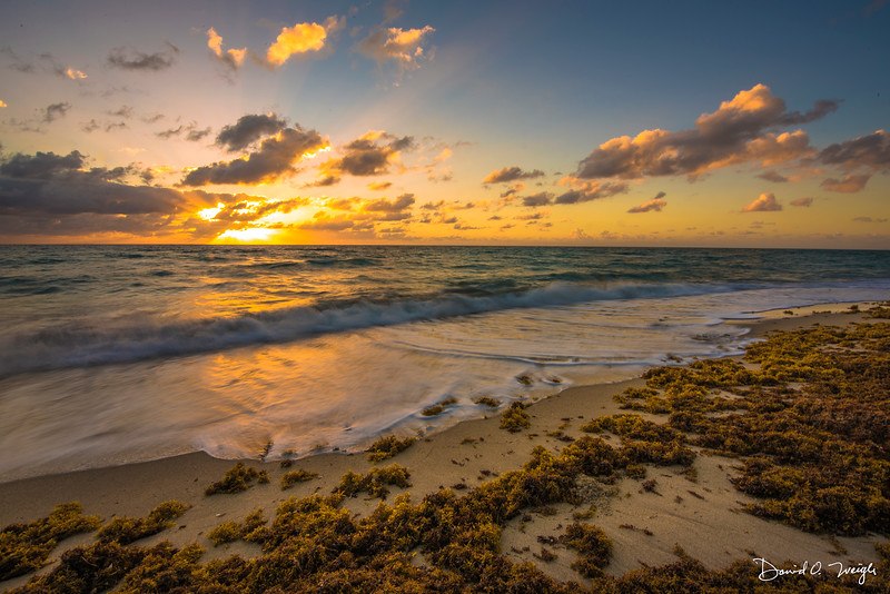 Hollywood Beach Sunrise 2.jpg