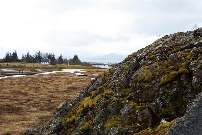 Iceland_39A8115_1.jpg