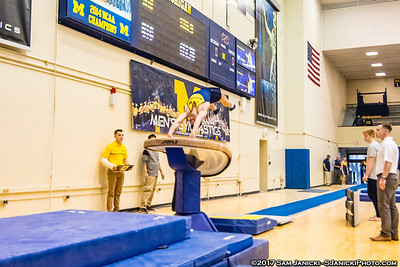 Vault - Michigan Men's Gymnastics Vs UIC 3-25-17