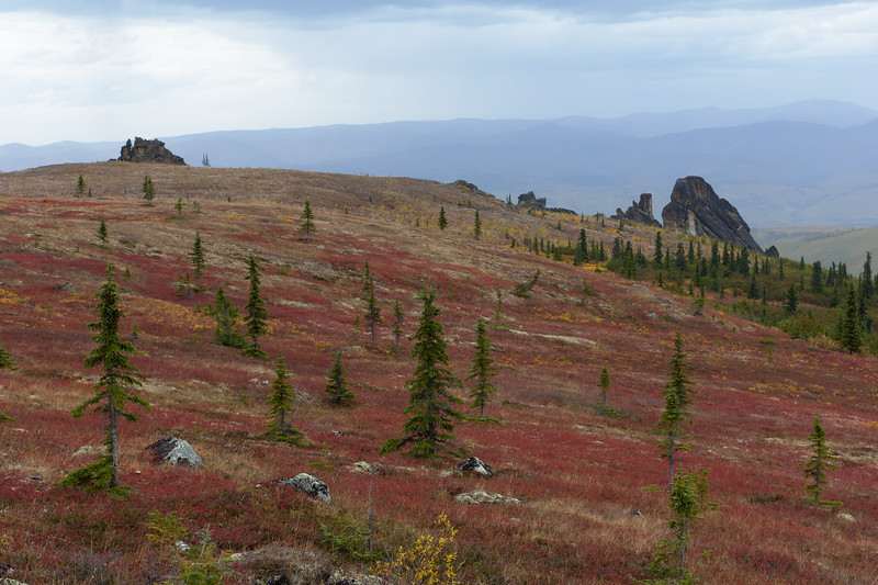 Red Tundra and Granite