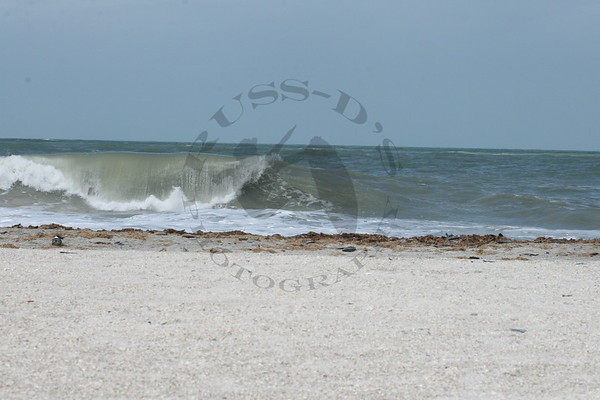 3/22/2010 Pinellas County Surf