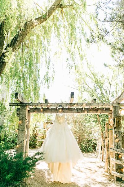 Robinson Wedding-8.jpg