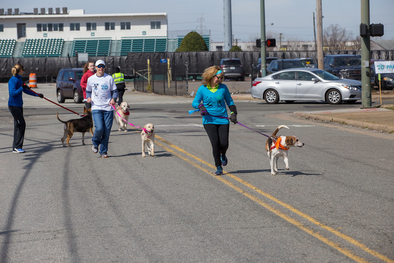 Richmond Spca Dog Jog 2018-656.jpg