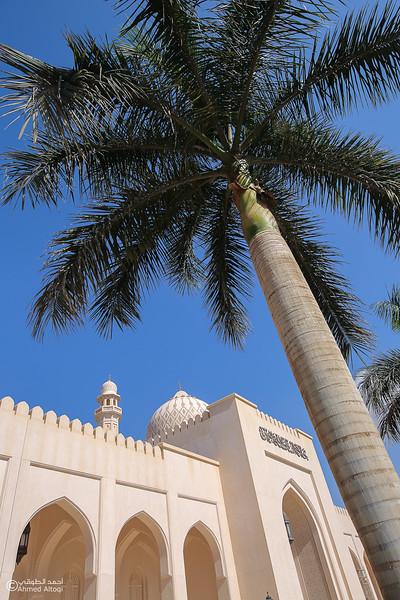 FE2A9050Dhofar-Sultan Qaboos Mosque-Salalah.jpg