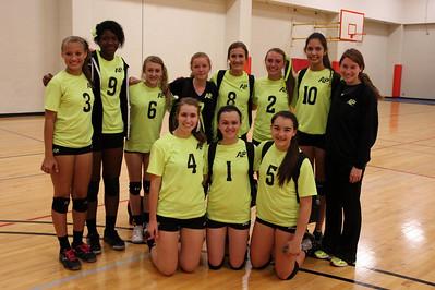 AP Volleyball - Clutch