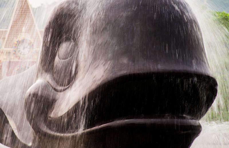 whale-fountain-long-exposure-hong-kong-disneyland.jpg
