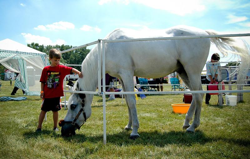 PHFF_Horse n Zoo-2977.jpg