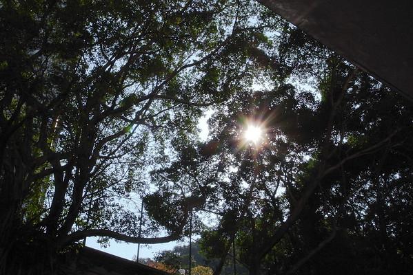 Sai Wan 西環 200901