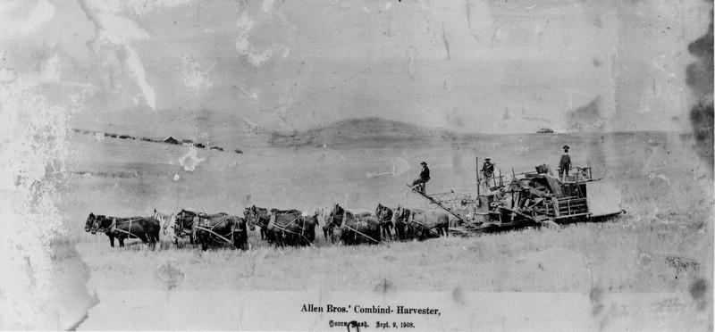Allen Brothers' Combine-Harvester